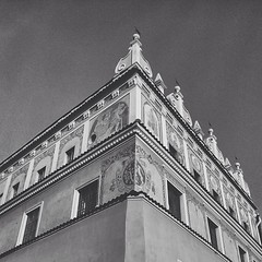 A couple of forgotten pictures from the city of Lublin.... The city's emblem is carved at the corner of this building. It's a goat standing on its back legs, reaching for some leaves. I'm sure the other ones tell some story as well....
