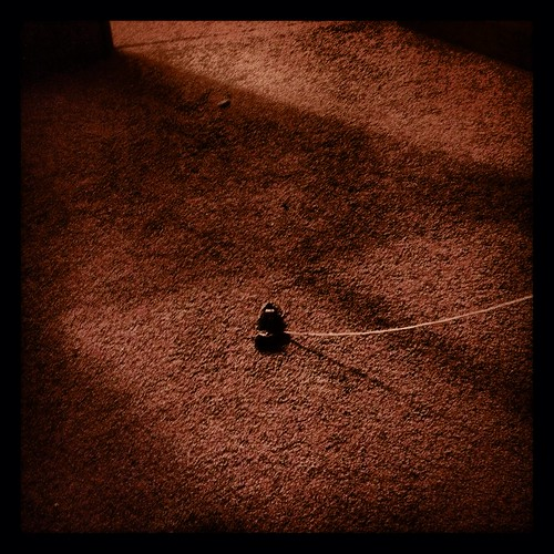 nightmouse by Nature Morte
