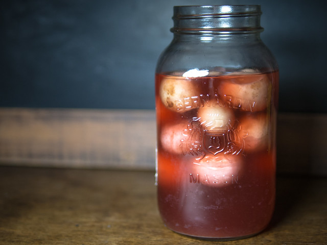 fermented radishes, ferment radish, how to ferment a radish, can you ferment a radish?