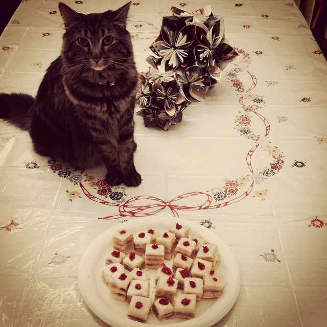 Cute cat, pretty holiday decorations and an Instagram filter later and no one will even notice that the petit fours were a complete bust. #pinterestfail