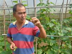 輝要有機菜園主人──輝哥,攝影:黃淑玲。