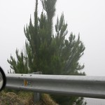Thick fog, Maui