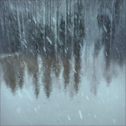 trees winter snow color reflection ice water photoshop suomi finland square woods nikon scenery snowfall kuopio 2014 ok6 d700 ollik joutenlampi joutenmäki 20140106 work3645