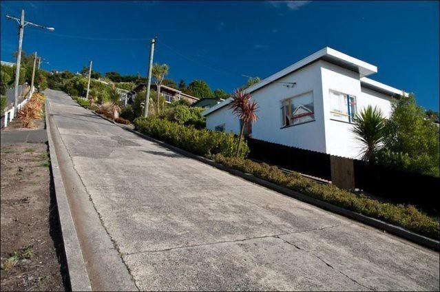 Baldwin St NZ (1)