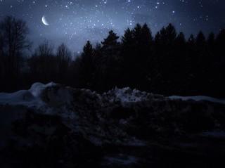 Sleepwalking In Snow
