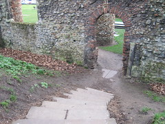 Down the steps to the Priory IMG_6257