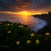 Santa Cruz Sunset by Yan L Photography