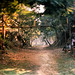 Nehru Park by faiz tajuddin