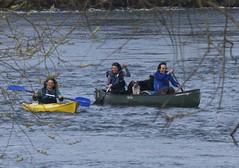 Canoeists, The Warren, Near Hay on Wye