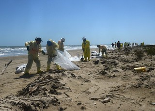Task force members remove oil-contaminated sand from the beach on Matagorda Island, Texas, March 30, 2014. Cleanup operations are being directed by a unified command comprised of personnel from the Texas General Land Office, U.S. Coast Guard and Kirby Inland marine. U.S. Coast Guard photo by Petty Officer 2nd Class George Degener.