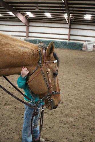 Horse Lesson 2Apr14 (68)