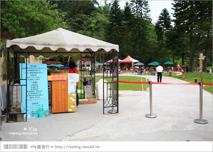 【新竹景點推薦】森林鳥花園~親子旅遊的好去處!在森林裡鳥兒與孩子們的樂園4