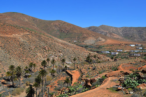 Orange landscape, Fuerteventura, Canary islands