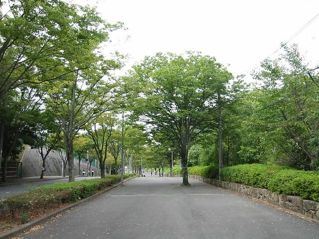 同志社大学への坂