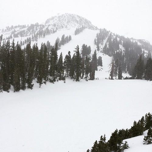 Let it Snowy Sunday. #mammothmountain