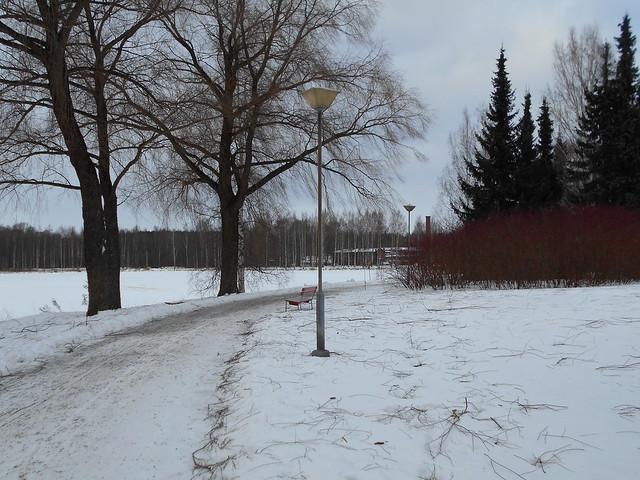 Laina-myrskyn vaikutuksia, 8.2.2015 Hämeenlinna; salavanoksapeite