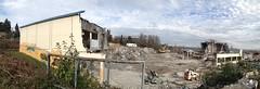 Demolition - Day 11