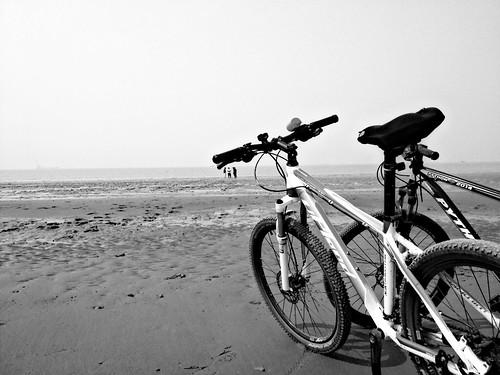 Keep calm and #bike on beach road.