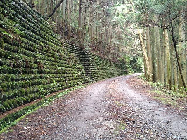 納古山 木和谷林道