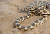 Derafshi Snake, Lytorhynchus ridgewayi