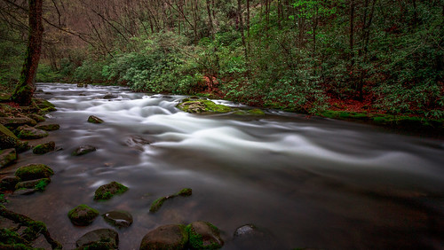 water river timelapse stream northcarolina tranquil greatsmokymountains oconaluftee