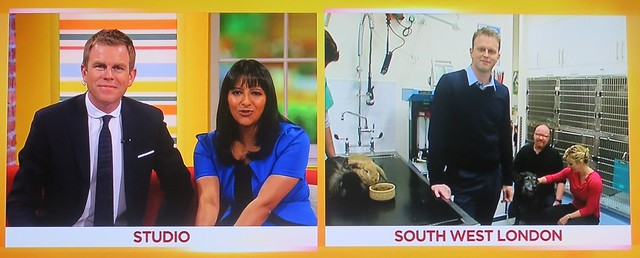 Vet4Life live on Daybreak