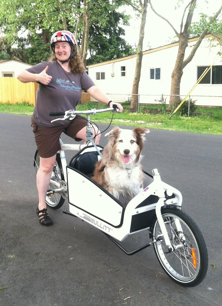 How To Bike With Your Dog Long Version Bikish
