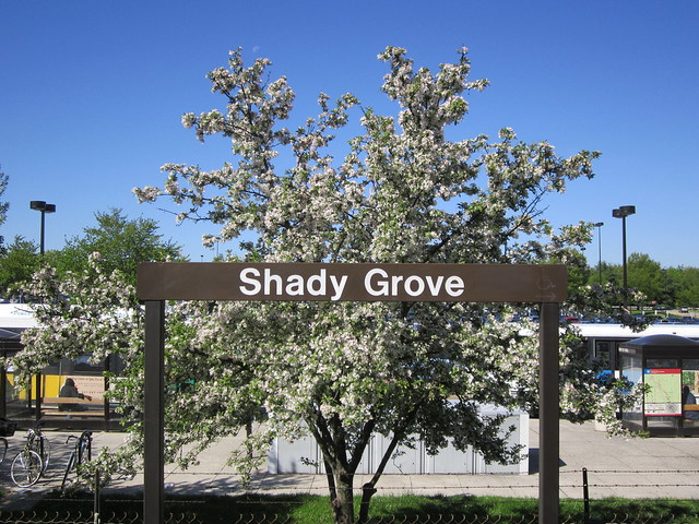 Shady Grove Road Station Flickr Photo Sharing