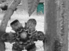 fencegreendoor