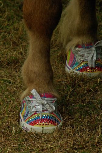 Horse Shoes????