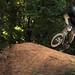 Small photo of Alex boyd , roller