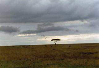 Kenia2002-07-10