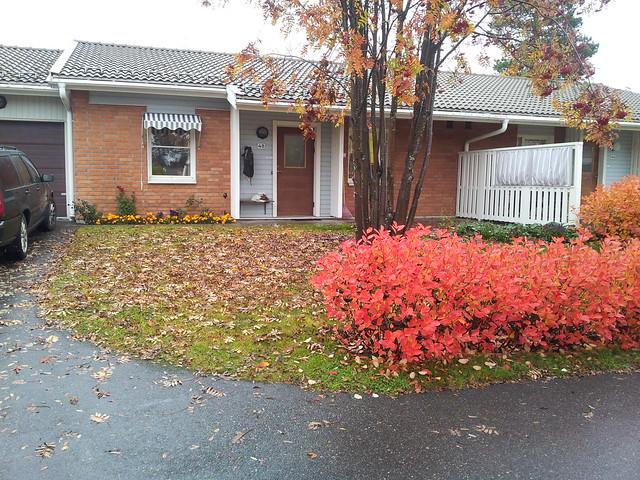 My house - Oct 4 2012
