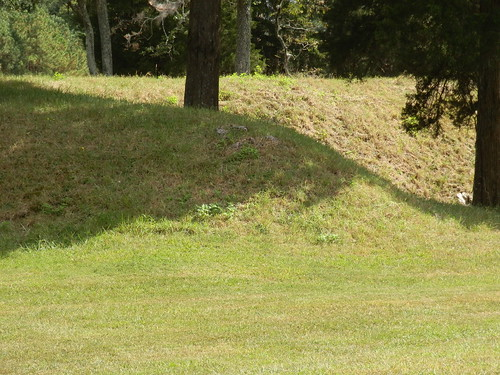 virginia thecrater uscivilwar petersburgnationalbattlefieldpark easternfrontunit