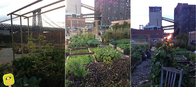 north brooklyn farm supper club - farm by the bridge