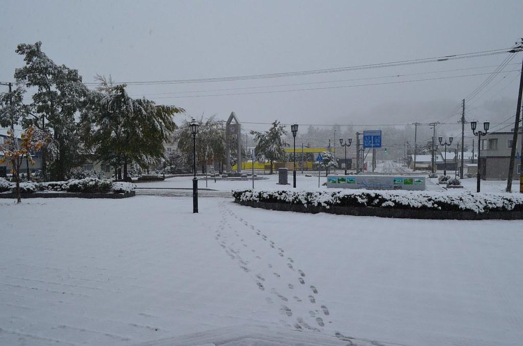 2013年初雪&初積雪 (5)