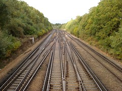 Picture of Category Chatham Main Line