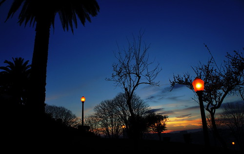 dusk silhouette by *manuworld*