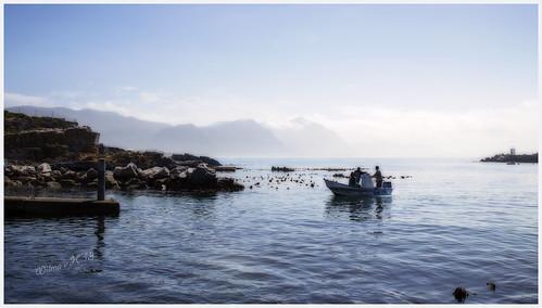 hermanus southafrica fishermen fishingboat atlanticocean westerncape ortoneffect hermanusnewharbour
