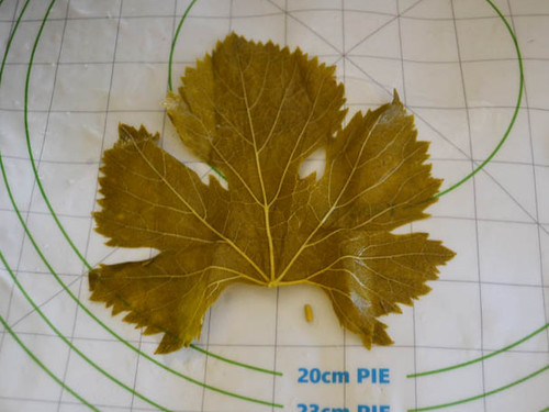 Place the rinsed grape leaf, shiny side up and remove the hard stem.
