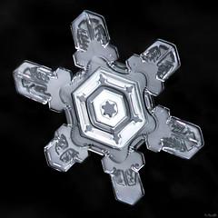 Snowflake: Fractal Symmetry