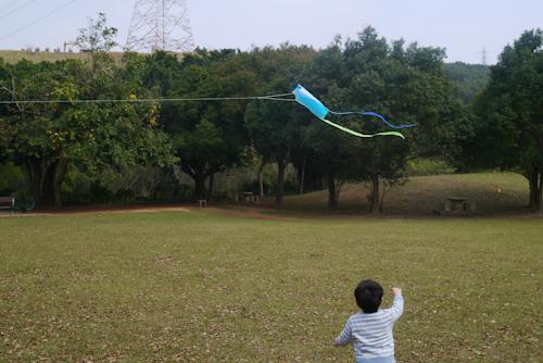 口袋風箏 (16)