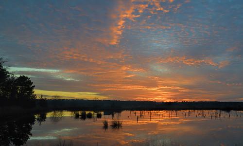 sunset clouds newjersey nj jersey pinelands southjersey chatsworth pinebarrens southernnewjersey d600 burlingtoncounty cranberrybog nikond600 route563 nikkor2485mmf3545 franklinparkerpreserve