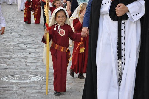 AionSur 13833201775_aa33c44a8b_d Jesús entró en Jerusalen en una espléndida tarde de Domingo de Ramos Cultura Semana Santa