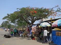 Chamundeshwari Temple vendors