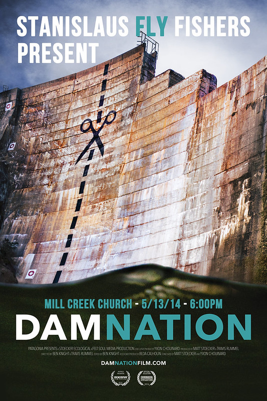 DamNation Poster for SFF