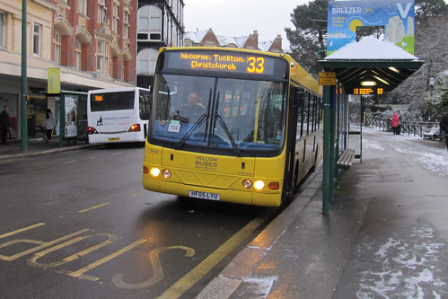 VM501 Yellow Buses