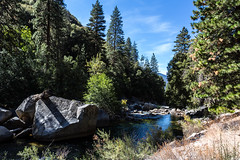 Kings Canyon & Sequoia - 261