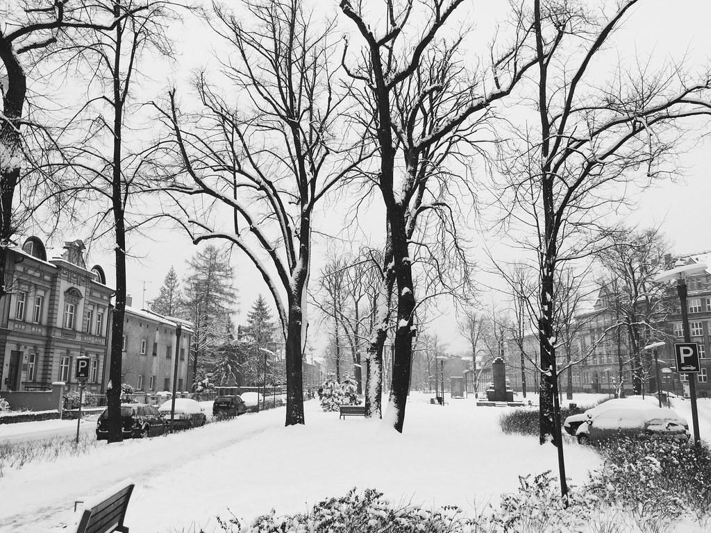 Snow Day (1/25/15)