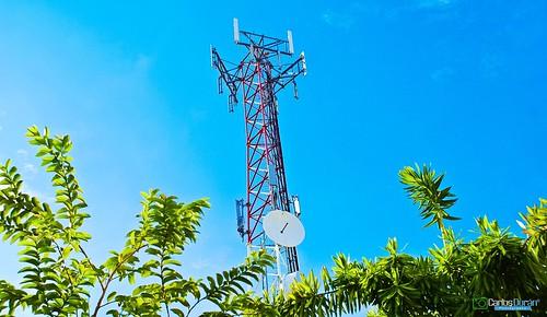 verde green plantas mao antena hd amina rd republicadominicana telecomunicaciones señal valverde carlosduran haltadefinicion